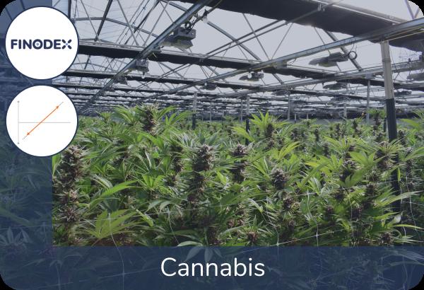 Aandelen Portefeuille Cannabis